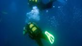 vista previa del artículo Limpieza anual del fondo marino en San Antoni, Ibiza