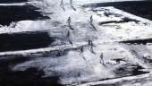 vista previa del artículo Pintores de Balesares exponen su obra en Manchester