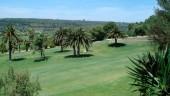 vista previa del artículo Manacor construirá campo de golf artificial