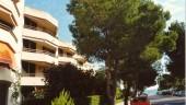 vista previa del artículo Aprtamento Lord Jim en  Puerto Pollensa, Mallorca