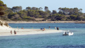 vista previa del artículo Oferta viajes a Mallorca