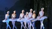 vista previa del artículo El Ballet de Moscú regresa con Don Quijote