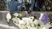 vista previa del artículo Multas en Palma por hacer botellón