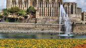 vista previa del artículo Baleares es la comunidad con más gasto de los turistas