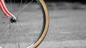 vista previa del artículo Se prohibirá aparcar las bicicletas en los árboles