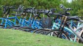 vista previa del artículo El servicio de bicicletas de Palma será gratis