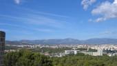 vista previa del artículo Palma de Mallorca es ideal para disfrutar en verano