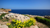 vista previa del artículo Fin de semana con incendios en Baleares