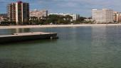 vista previa del artículo Subida de los autobuses en Palma de Mallorca