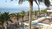 vista previa del artículo Visita Mallorca el próximo puente de diciembre