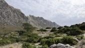 vista previa del artículo Aprobado polémico decreto de lenguas en Baleares