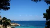 vista previa del artículo Periódico alemán alerta sobre los «peligros» de Mallorca durante el verano