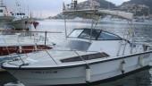 vista previa del artículo Baleares regulará los party boats