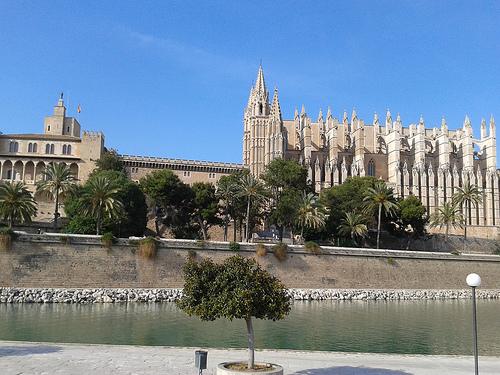 catedralpalma
