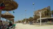 vista previa del artículo Atractivos para conocer la isla de Mallorca