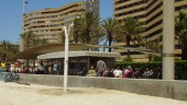 vista previa del artículo El turismo de cruceros mejorará en diciembre en Mallorca