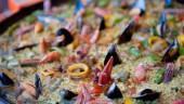 vista previa del artículo Rutas gastronómicas por Mallorca