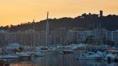 vista previa del artículo Propuestas para disfrutar en Palma de Mallorca